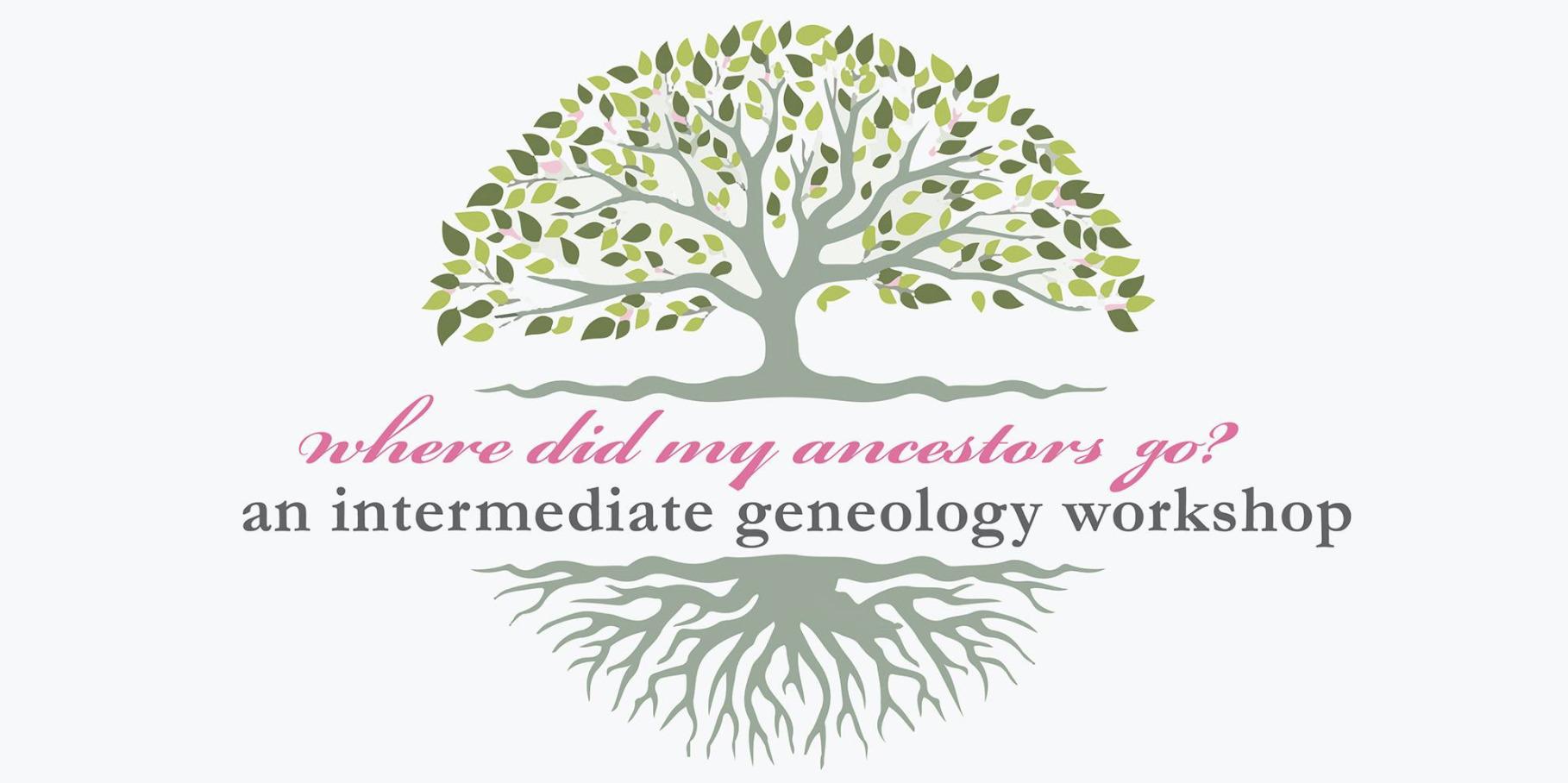 Intermediate Genealogy: Where Did My Ancestors Go?